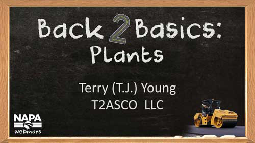 Back to Basics: Plants